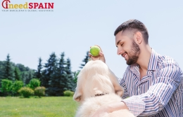 "Dogs' companions in Barcelona will ""rinse"" after their pets"